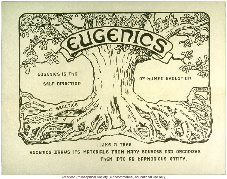 Image result for photo of eugenics