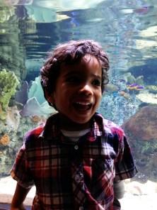 This kid has a million dollar smile.