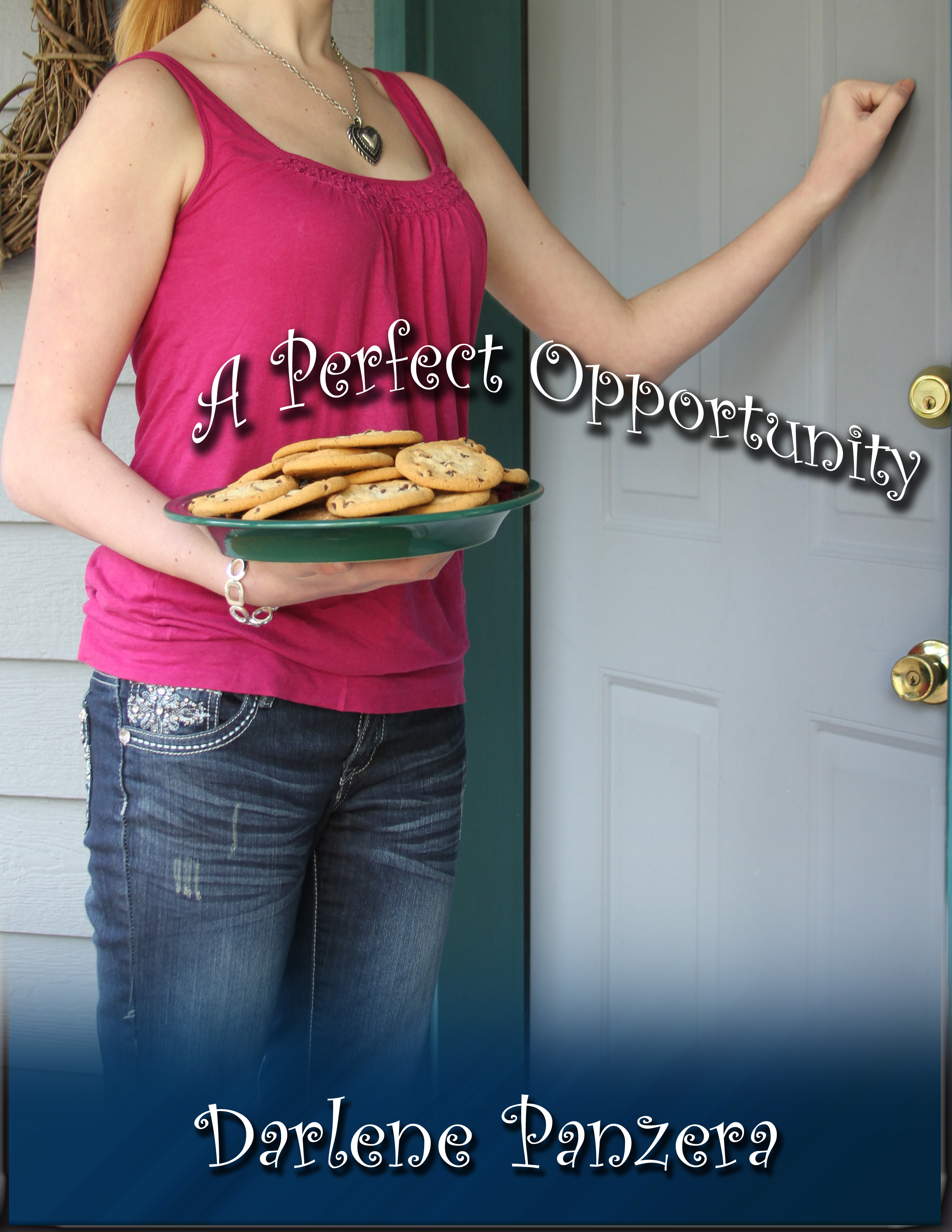 A Perfect Opportunity book cover