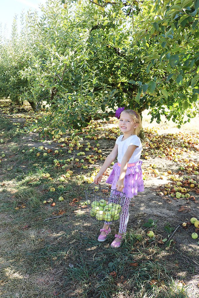 fall-to-do-apple-picking