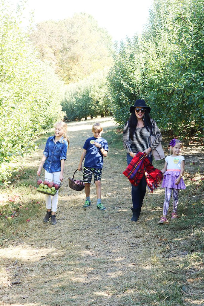 fall-to-do-list-apples, fall apple picking with kids, what to wear to the apple orchard apple picking, fall activities, things to do in fall, fall to do list