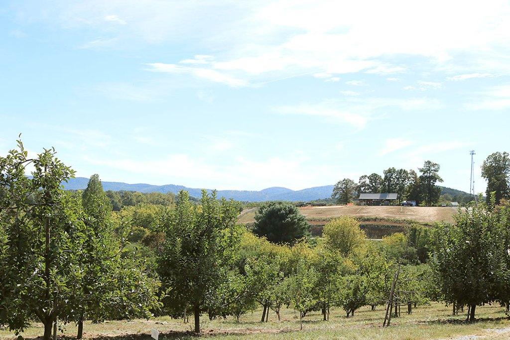 fall-to-do-list-farm