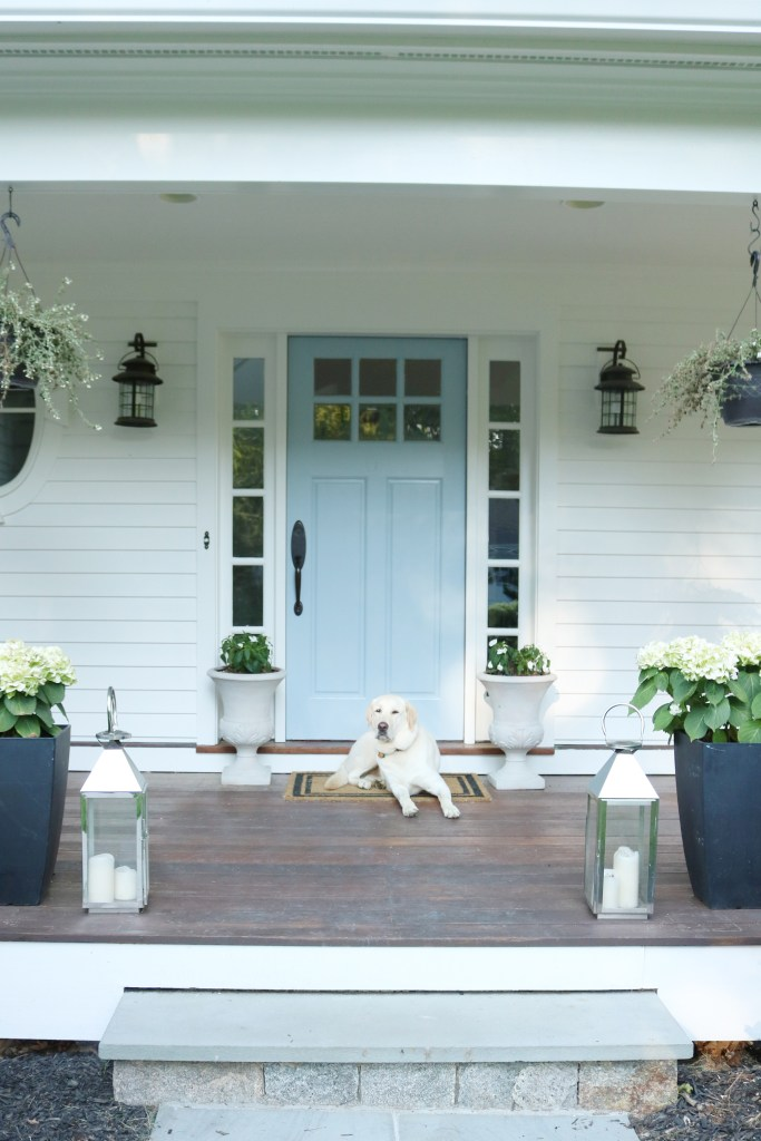 Exterior Paint Reveal before and after, white house with blue door, dog on front porch || Darling Darleen