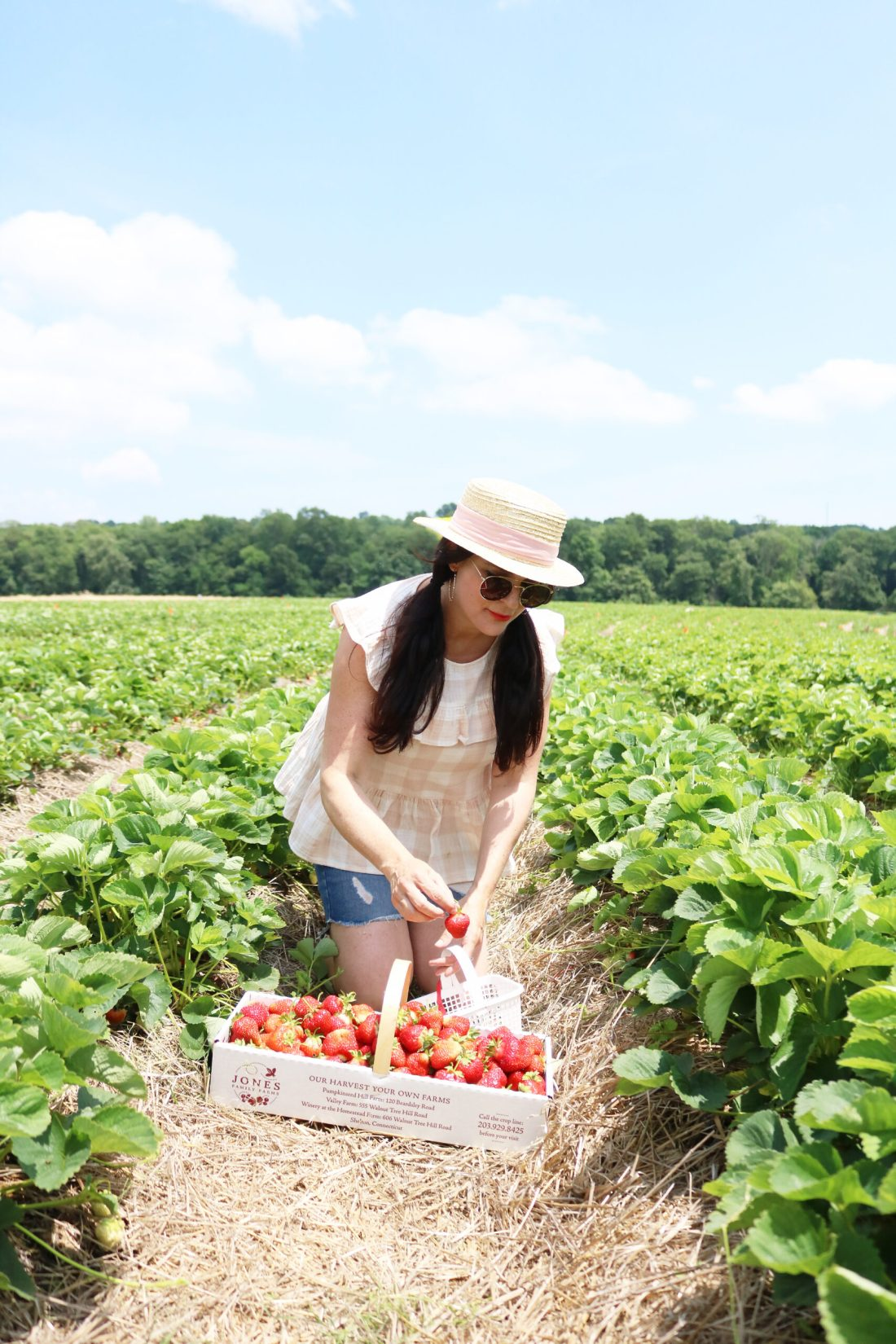 Strawberry Fields Forever, Annual Strawberry picking trip, summer fruit picking, Jones family Farm, New England life, What to wear when strawberry picking || Darleen Meier Top CT Lifestyle Blogger #darleenmeier #strawberryfields