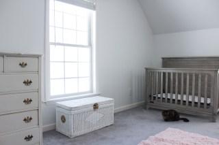 nursery redesign stage 1
