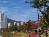 Jang-yu walking path