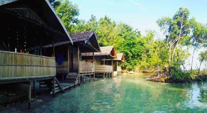 cottage rental raja ampat