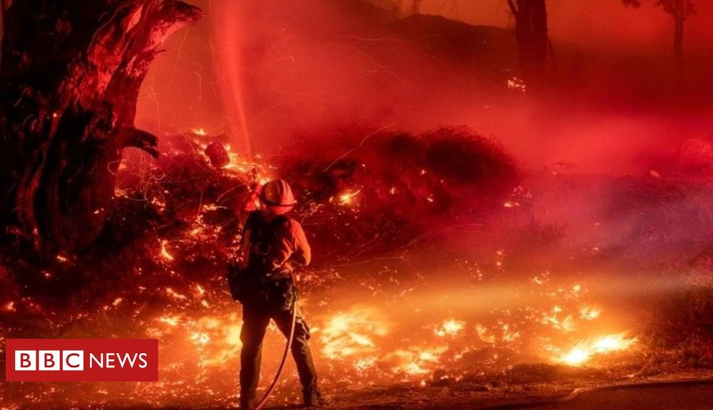 Trump California fires: Trump threatens to pull federal aid funds