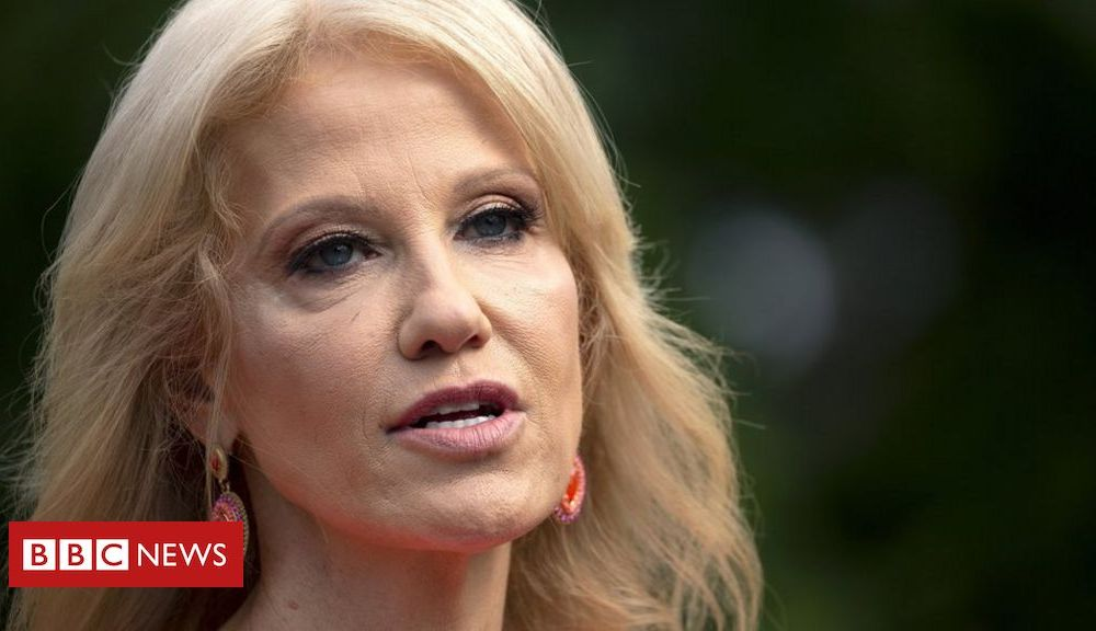 Trump Kellyanne Conway: Key moments from her White House career