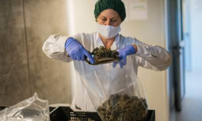 Insider Cannabis: Marijuana on the ballot — Aurora gets a new CEO — Wall Street stops testing for weed