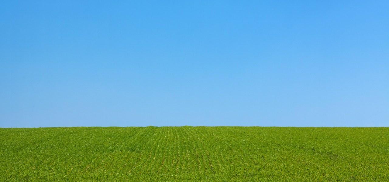 Purging Process Program landscape
