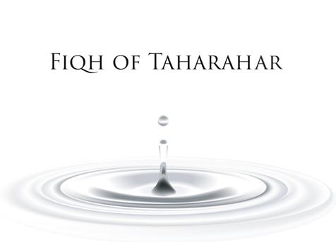 Fiqh: Tahaarah (Lesson 2)