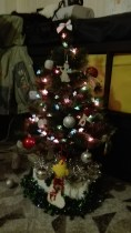 We decorated a Christmas tree with a family from church to celebrate the beginning of advent