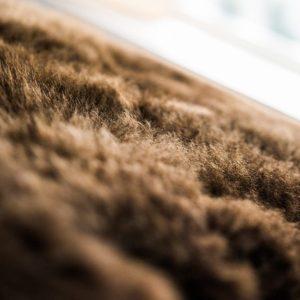 sheepskin hair close up