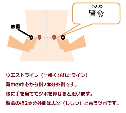 腎兪のツボ位置