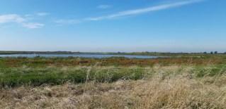 Indvielse og navngivning af regnvandssøen @ Darum regnvandssø