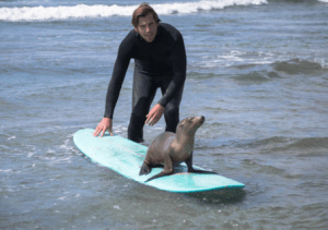 Murphy gave his new friend a chance to have the board solo.