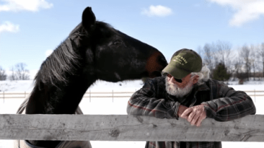 Waco the old horse and Donnie McAdams have created a beautiful friendship. Two loners who give each other a reason to keep going.
