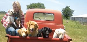 Few things can make country singer Miranda Lambert's heart sing like her seven rescue dogs.