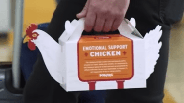 Popeye's Louisiana Kitchen restaurant is offering travelers their version of emotional support chicken.