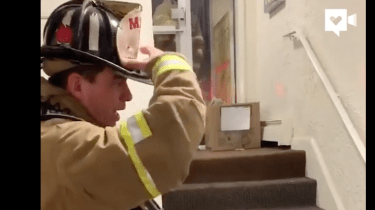 Firefighter uses American sign language to communicate with non-verbal boy.