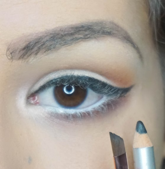 create a cat eye, you can use angled brush Z 317 apply mascara and falsies