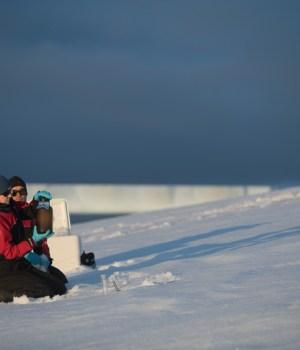 Plastica in Antartide