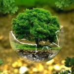da preservare ambiente 1
