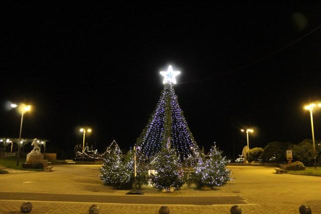 albero di Natale Tonfano Marina di Pietrasanta