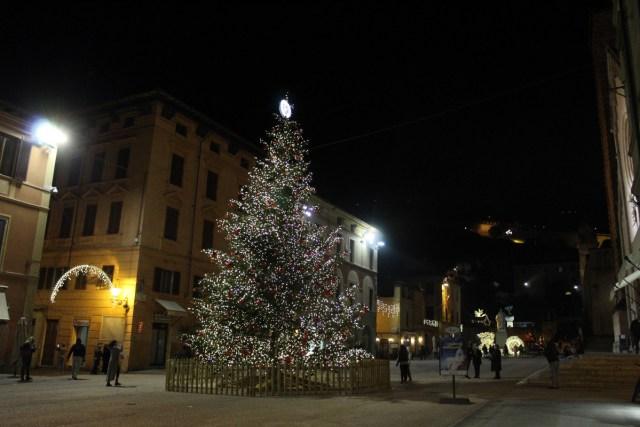 albero di Natale piazza Duomo Pietrasanta