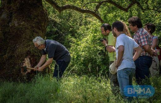 www.vimanews.gr