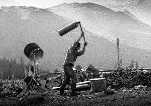 Η ξύλευση των δασών, ασκούμενη κατά το επιβαλλόμενο μέτρο, συντελεί στη συνέχεια κι ανάπτυξη των δασών, ικανοποιώντας ταυτόχρονα βασικές ανθρώπινες ανάγκες (από το αρχείο του συγγραφέα).