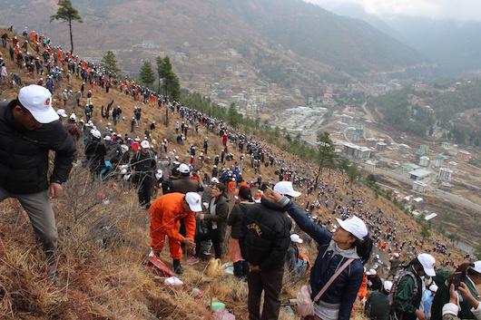anadasosi_Bhutans