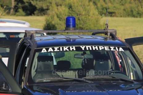 tzip_dasiki_upiresia_dasofulakes