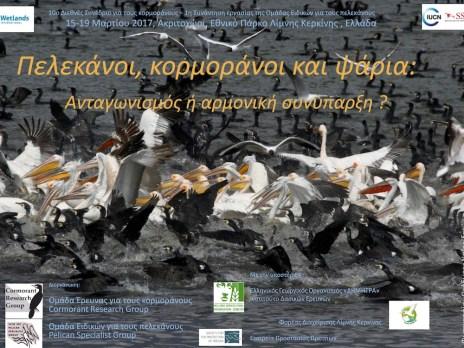 pelcormfish_poster_greek__pelekanoi