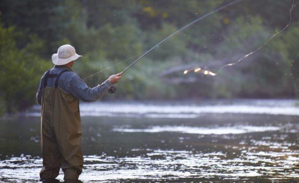Αποτέλεσμα εικόνας για Απαγόρευση αλιείας