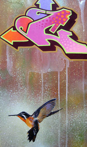hummingbird-c