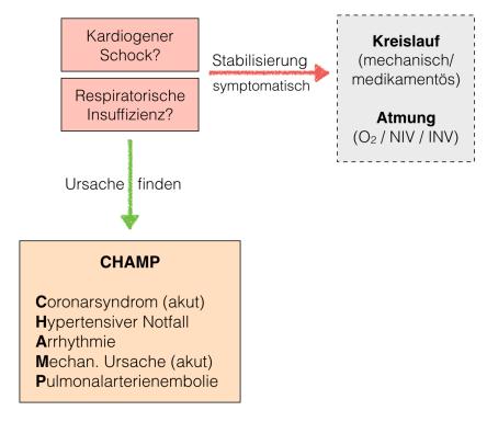 Herzinsuff 2
