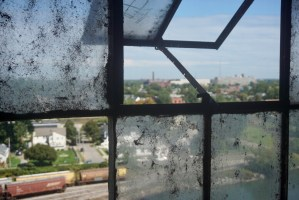 A peek at Buffalo's neighborhoods from the grain elevators