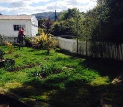 Sunny Garden Image
