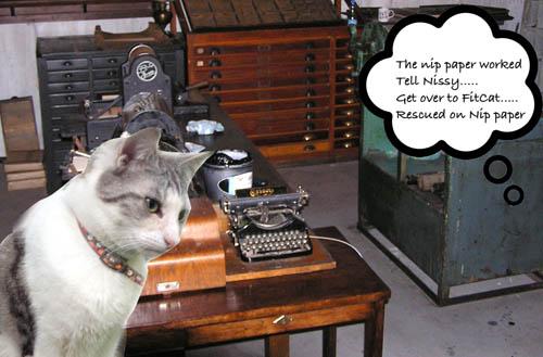 Rescued the Cat Book