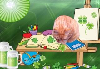 Worldwide Blogging Seville the Cat