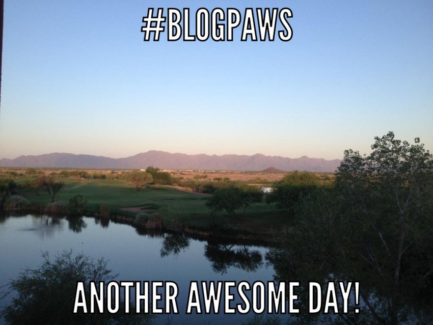 Arizona sunrise, Blogpaws in Arizona, sunrise AZ, BlogPaws Ambassadors