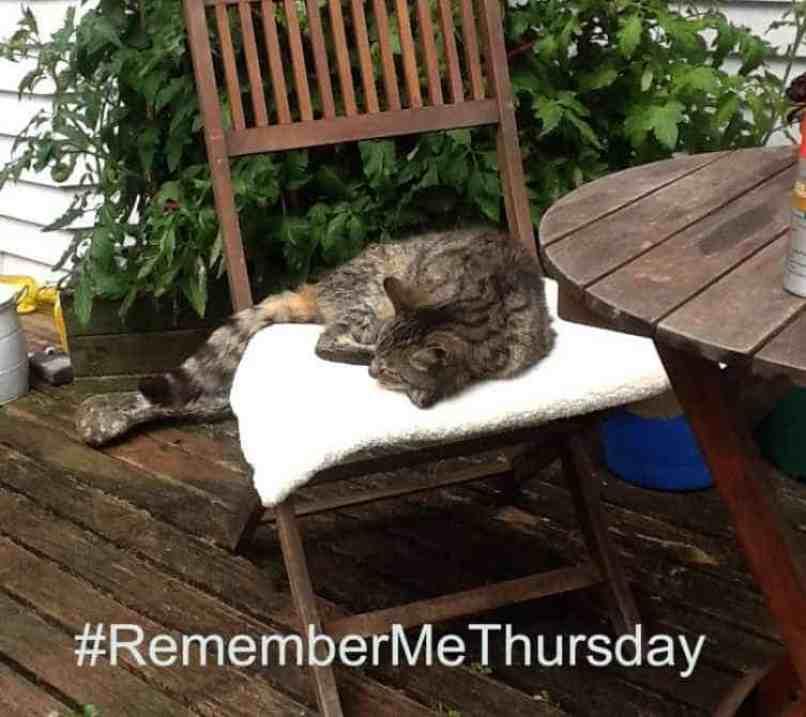 #remembermethursday