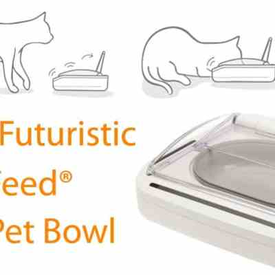SureFeed Sealed Pet Feeder