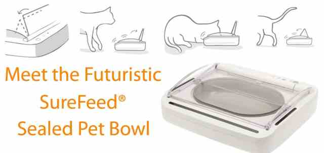 Successful 2016 SureFeed Sealed Pet Feeder