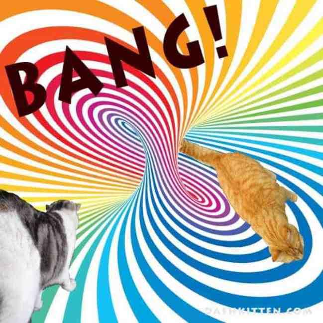 adventurcats-big-bang