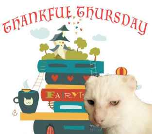 We Are Not Missing Thankful Thursday image with Harvey Cat