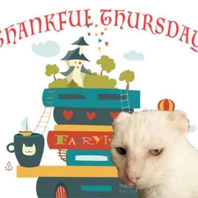 Thankful Thursday image with Harvey Cat