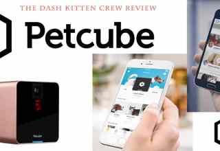 The Putcube Cat Camera